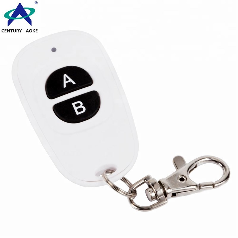 White duck egg shape plastic shell remote 2 button 433Mhz/315Mhz wireless remote control